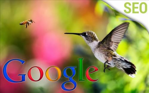 Google Hummingbird có ý nghĩa quan trọng đối với SEO